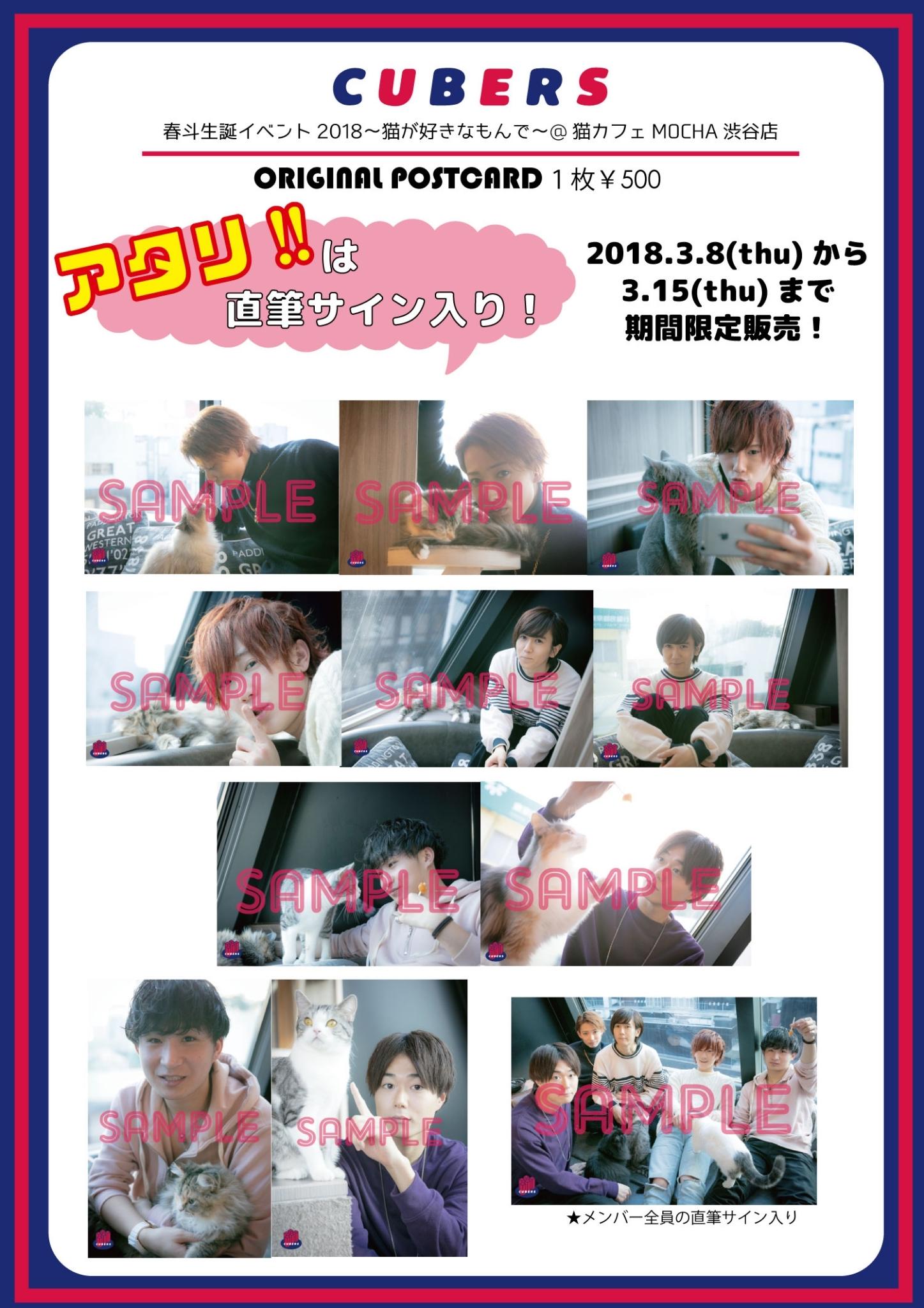 """【NEWS】1週間限定で春斗生誕記念 猫カフェ""""ポストカード""""通販販売"""